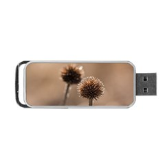 Withered Globe Thistle In Autumn Macro Portable Usb Flash (one Side) by wsfcow