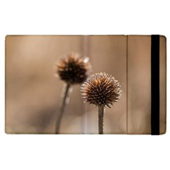 Withered Globe Thistle In Autumn Macro Apple Ipad 2 Flip Case