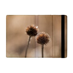 Withered Globe Thistle In Autumn Macro Apple Ipad Mini Flip Case by wsfcow