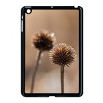 Withered Globe Thistle In Autumn Macro Apple iPad Mini Case (Black)