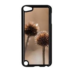 Withered Globe Thistle In Autumn Macro Apple Ipod Touch 5 Case (black)