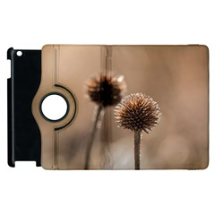 Withered Globe Thistle In Autumn Macro Apple Ipad 2 Flip 360 Case