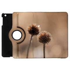 Withered Globe Thistle In Autumn Macro Apple Ipad Mini Flip 360 Case by wsfcow