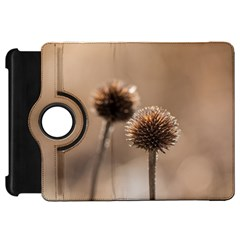 Withered Globe Thistle In Autumn Macro Kindle Fire Hd Flip 360 Case by wsfcow