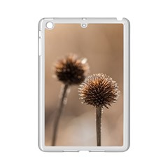 Withered Globe Thistle In Autumn Macro Ipad Mini 2 Enamel Coated Cases by wsfcow