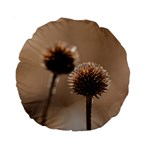 Withered Globe Thistle In Autumn Macro Standard 15  Premium Round Cushions