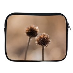Withered Globe Thistle In Autumn Macro Apple Ipad 2/3/4 Zipper Cases by wsfcow