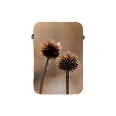 Withered Globe Thistle In Autumn Macro Apple Ipad Mini Protective Soft Cases