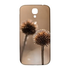 Withered Globe Thistle In Autumn Macro Samsung Galaxy S4 I9500/i9505  Hardshell Back Case