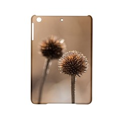Withered Globe Thistle In Autumn Macro Ipad Mini 2 Hardshell Cases by wsfcow