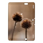 Withered Globe Thistle In Autumn Macro Kindle Fire HDX 8.9  Hardshell Case