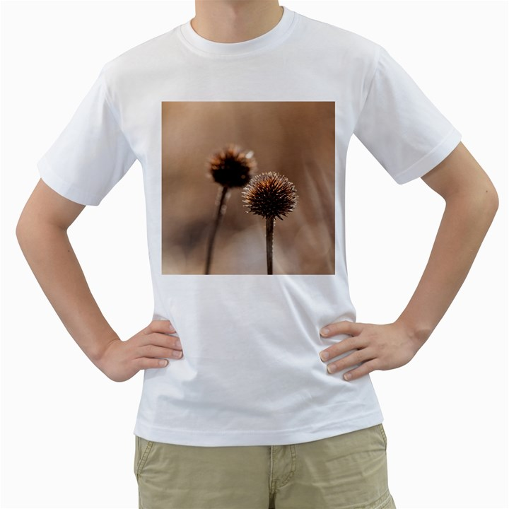 Withered Globe Thistle In Autumn Macro Men s T-Shirt (White)