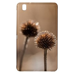 Withered Globe Thistle In Autumn Macro Samsung Galaxy Tab Pro 8 4 Hardshell Case by wsfcow