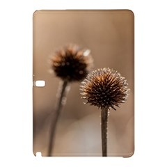 Withered Globe Thistle In Autumn Macro Samsung Galaxy Tab Pro 12 2 Hardshell Case