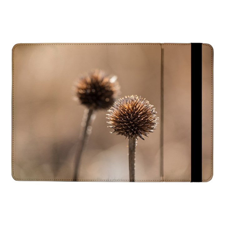 Withered Globe Thistle In Autumn Macro Samsung Galaxy Tab Pro 10.1  Flip Case