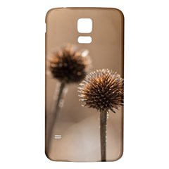 Withered Globe Thistle In Autumn Macro Samsung Galaxy S5 Back Case (white) by wsfcow