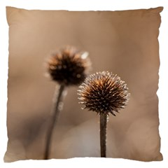 Withered Globe Thistle In Autumn Macro Large Flano Cushion Case (two Sides) by wsfcow