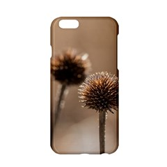 Withered Globe Thistle In Autumn Macro Apple Iphone 6/6s Hardshell Case by wsfcow