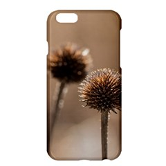 Withered Globe Thistle In Autumn Macro Apple Iphone 6 Plus/6s Plus Hardshell Case by wsfcow