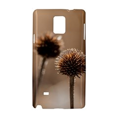 Withered Globe Thistle In Autumn Macro Samsung Galaxy Note 4 Hardshell Case