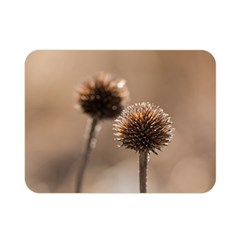 Withered Globe Thistle In Autumn Macro Double Sided Flano Blanket (mini)