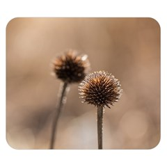 Withered Globe Thistle In Autumn Macro Double Sided Flano Blanket (small)