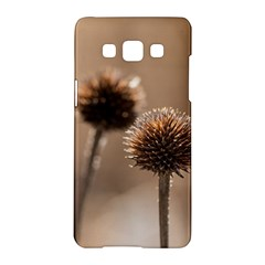 Withered Globe Thistle In Autumn Macro Samsung Galaxy A5 Hardshell Case
