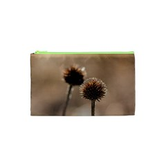 Withered Globe Thistle In Autumn Macro Cosmetic Bag (xs)