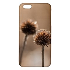 Withered Globe Thistle In Autumn Macro Iphone 6 Plus/6s Plus Tpu Case by wsfcow