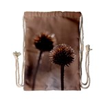 Withered Globe Thistle In Autumn Macro Drawstring Bag (Small)