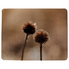 Withered Globe Thistle In Autumn Macro Jigsaw Puzzle Photo Stand (rectangular)