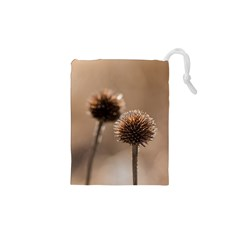Withered Globe Thistle In Autumn Macro Drawstring Pouches (xs)