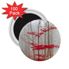 Magic Forest In Red And White 2 25  Magnets (100 Pack)  by wsfcow
