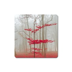 Magic Forest In Red And White Square Magnet by wsfcow