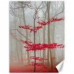 Magic forest in red and white Canvas 12  x 16   16 x12 Canvas - 1