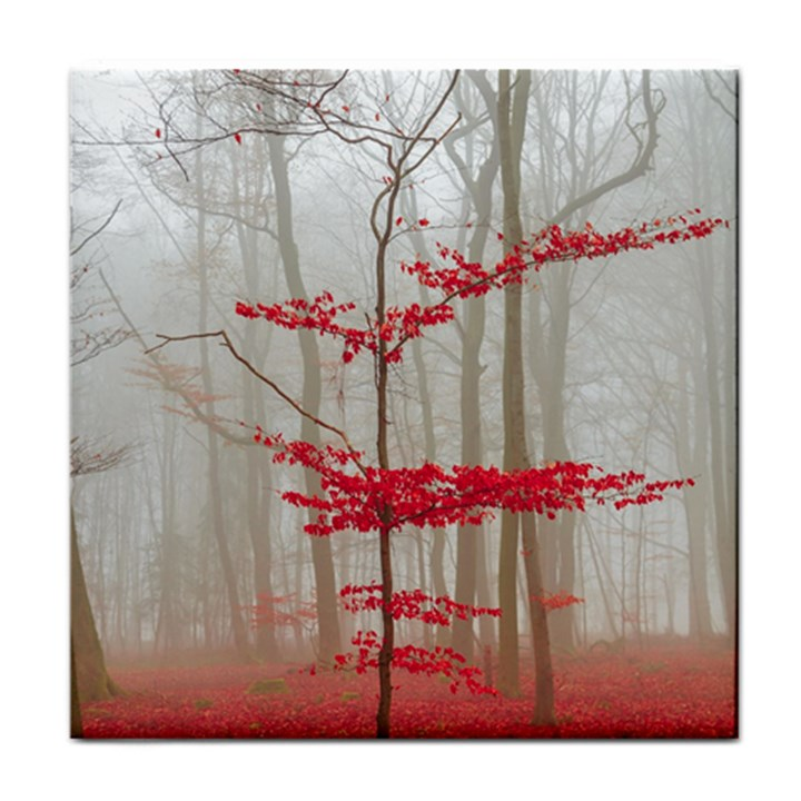 Magic forest in red and white Face Towel