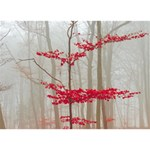 Magic forest in red and white Miss You 3D Greeting Card (7x5) Back