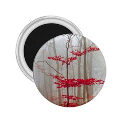 Magic Forest In Red And White 2 25  Magnets by wsfcow