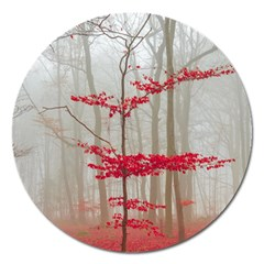 Magic Forest In Red And White Magnet 5  (round) by wsfcow