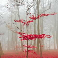 Magic Forest In Red And White Magic Photo Cubes by wsfcow