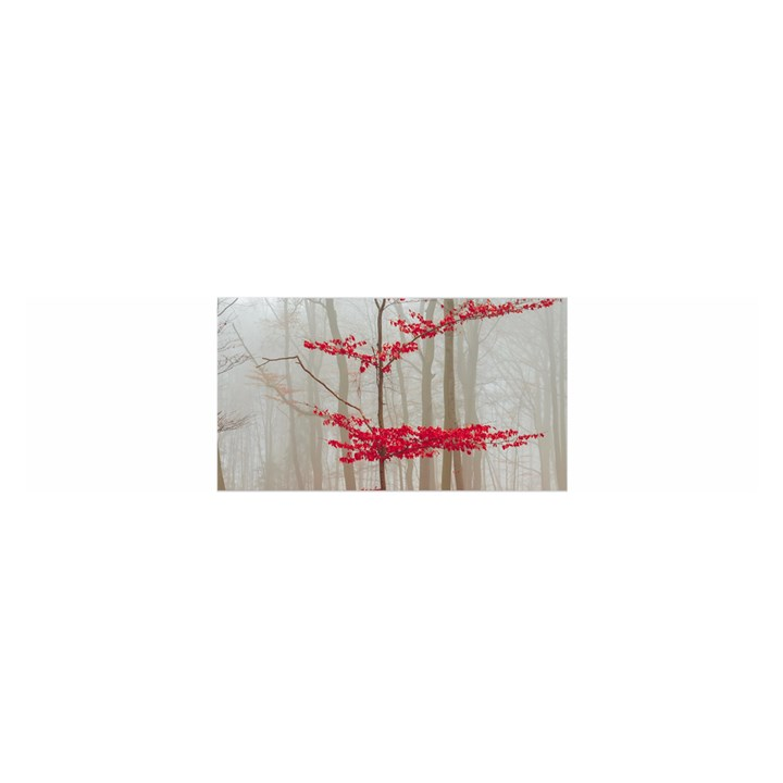 Magic Forest In Red And White Satin Scarf (Oblong)