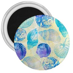 Seashells 3  Magnets by DanaeStudio