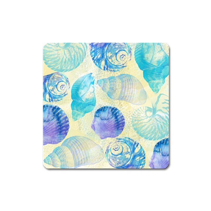 Seashells Square Magnet