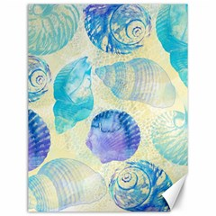Seashells Canvas 12  X 16   by DanaeStudio