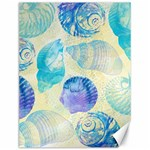Seashells Canvas 12  x 16   16 x12 Canvas - 1