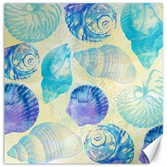 Seashells Canvas 20  x 20