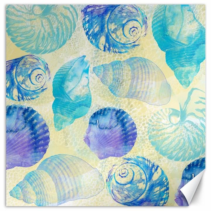 Seashells Canvas 20  x 20