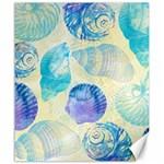 Seashells Canvas 20  x 24   24 x20 Canvas - 1