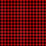 Lumberjack Plaid Fabric Pattern Red Black Best Friends 3D Greeting Card (8x4) Inside