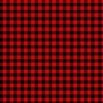 Lumberjack Plaid Fabric Pattern Red Black BELIEVE 3D Greeting Card (8x4) Inside